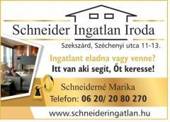 Schneider Ingatlan Iroda