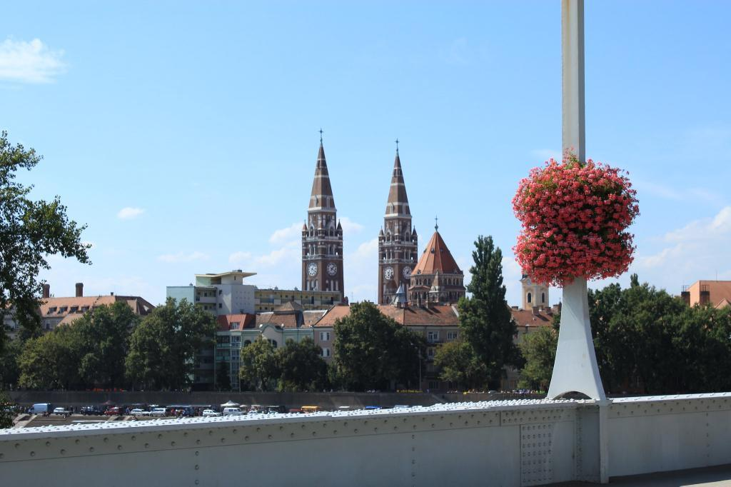 40 milliónál kezdődnek az élhető családi házak Szegeden
