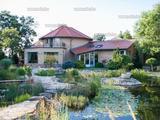 Eladó Leányfalun örök panorámás luxusvilla 7500 nm kerttel, medencével, szaunával, kerti tó
