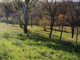 Örökzöld panorámás telek Zalaegerszegen eladó