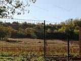 Nyimben, közel egy hektáros területtel tanya eladó!