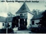 Balaton közelében, Karádon kastély jellegű családi ház eladó!