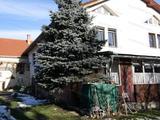 Tágas családi ház Sopronban
