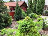 Eladó téglalakás, Budaörs, Budaörsi Kamaraerdő, Kilátás az erdőre