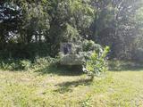 Eladó Mezőgazdasági, Tiszavasvári