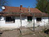 Eladó Tanya Balástyán régi 5-ös úttól 1 km-re 3 hektár területen!