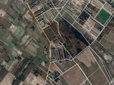 Eladó szántóföld, legelő, Balástya