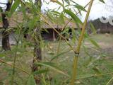 Petőfiszálláson, a Péteri-tó közelében befejezésre váró tanya eladó!
