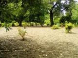 Fehérvárcsurgón András dűlőn közel a tóhoz könnyen megközelíthető helyen Bruttó 25 m2-es. téglaé....