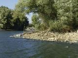 Utolsó szabad Duna-parti panorámás telek eladó