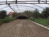 Gondosan karbantartott zárt kert várja új gazdáját