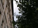 Eladó üzlet, Budapest IX. kerület, Haller utca