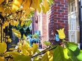 Angol stílusú családi villa ősfás kertben