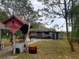 Eladó családi ház, Csongrád, Bokros környéke