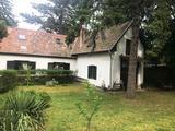 Tahitótfaluban (Tahiban) családi ház ősfás telken eladó